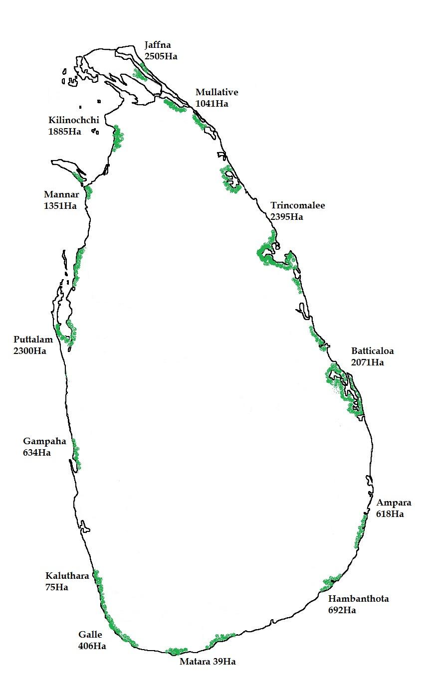 Mangrove Distribution